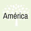almara consultores america