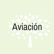 almara consultores aviacion