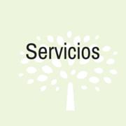 almara consultores servicios1