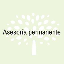 asesoria permanente