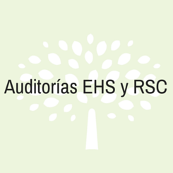 auditoria ehs rsc