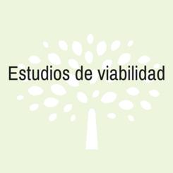 estudio viavilidad