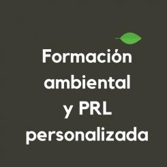 Formacion-personalizada